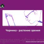 Eye supplements. О чернике - растении зрения. Новости офтальмологии портала Орган зрения www.organum-visus.com