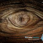 """Артелак® Всплеск, Artelac® Splash. Глазные капли. Лечение """"сухого глаза"""". В аптеке для глаз портала Орган зрения organum-visus.ru"""