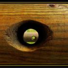 Магия глаза Вуду. Strange Eyes. Источник: pixdaus