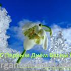С Первым днём Весны! Портал Орган зрения organum-visus.ru