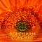 «Rompharm Company» в России.