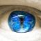 Butterfly-Eye.