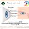Dry Eye News. Невские горизонты-2016: сателлитный симпозиум при поддержке компании Thea! Новости офтальмологии портала Орган зрения www.organum-visus.com