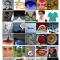 Curiosities Eyes: Strange Eyes, Edible Eye, Makeup Eye, Ordered spaces.